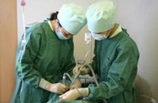 インプラント手術の様子